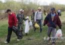 Неравнодушные новополочане убрали берег Двины от моста по улице Калинина до больничного городка