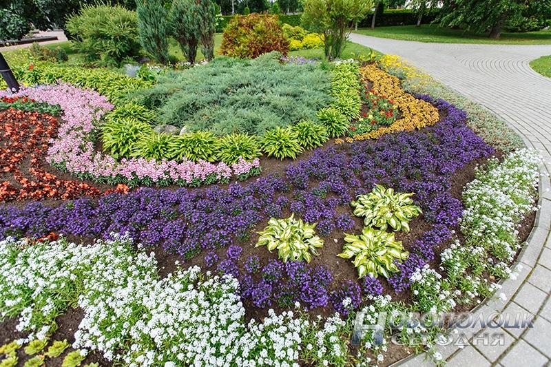Цветущие газоны своими руками 74