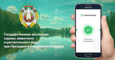 Госинспекция охраны животного и растительного мира запустила приложение для сообщений о нарушениях