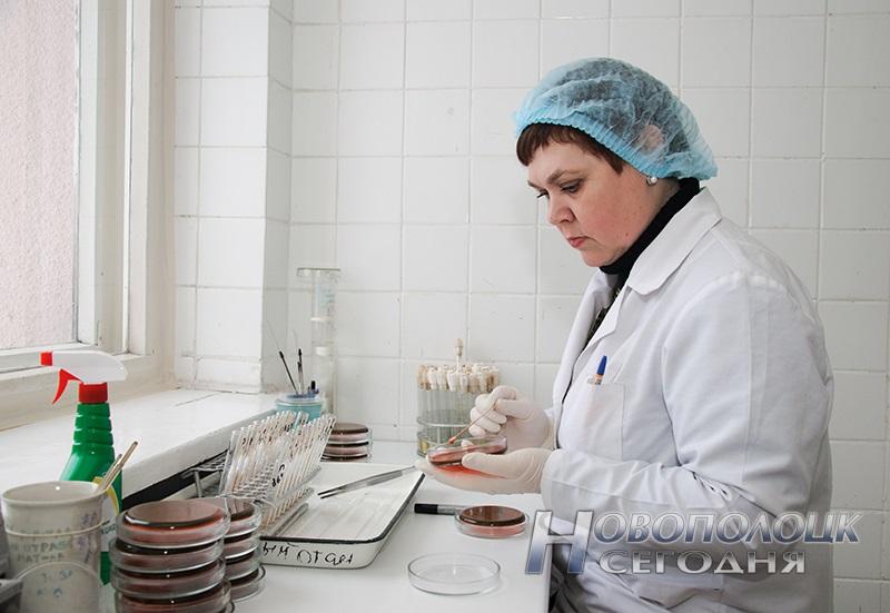Фельдшер-лаборант микробиологической лаборатории Зеленко Наталья Васильевна производит посев материала на кишечную микрофлору