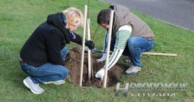 14 апреля стартует экологическая кампания «Обустроим малую родину»