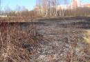 За выжигание сухой травы – штраф от 10 до 40 базовых величин