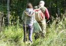 Что нужно знать, собираясь в лес