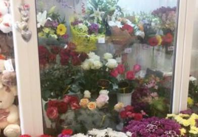 Полоцкие коммерсанты по теневой схеме ввезли цветы почти на Br204 тыс.