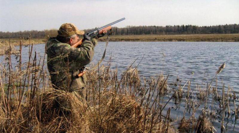 новые правила охоты