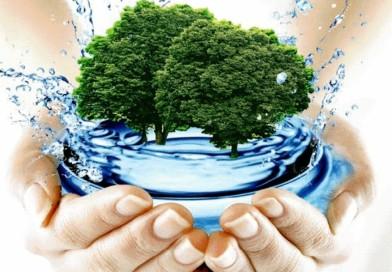 С заботой о водоемах. Отмечаем Всемирный день водных ресурсов (+Инфографика)