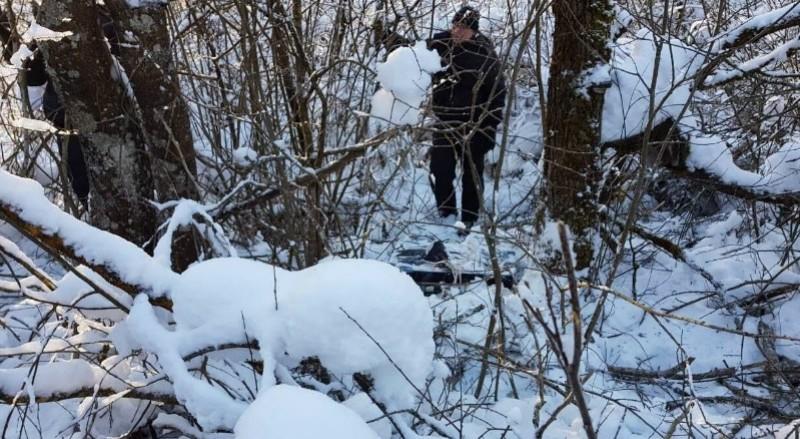 Убил мать, тело спрятал лесу. Что грозит сыну?