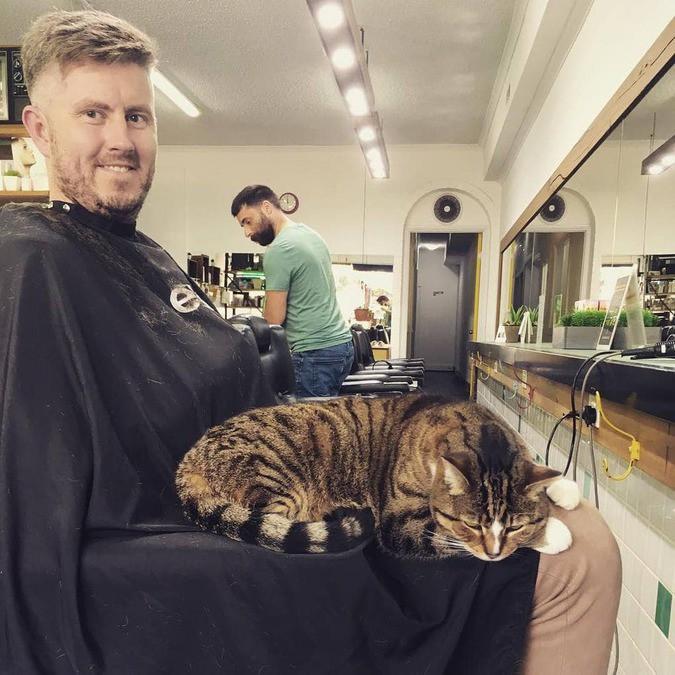 Кошка Бетти Бу уже несколько лет работает в парикмахерской, приводя в восторг клиентов