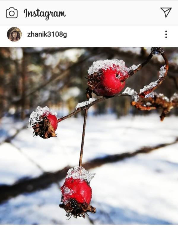 Новополоцк зима от подписчиков