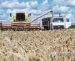 Хлеборобы ОАО «Кушлики» планируют в нынешнюю страду получить хороший урожай
