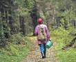 Грибникам на заметку. Что делать если вы заблудились в лесу