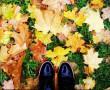 Сказочная осень в городе: новополочане делятся фото в Instagram