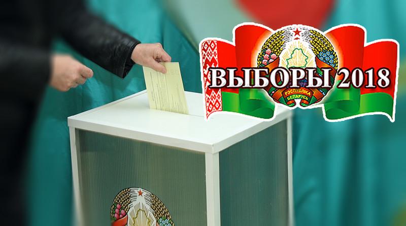 vybory v mestnye Sovety deputatov
