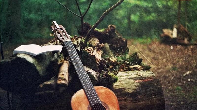 Гитара в лесу