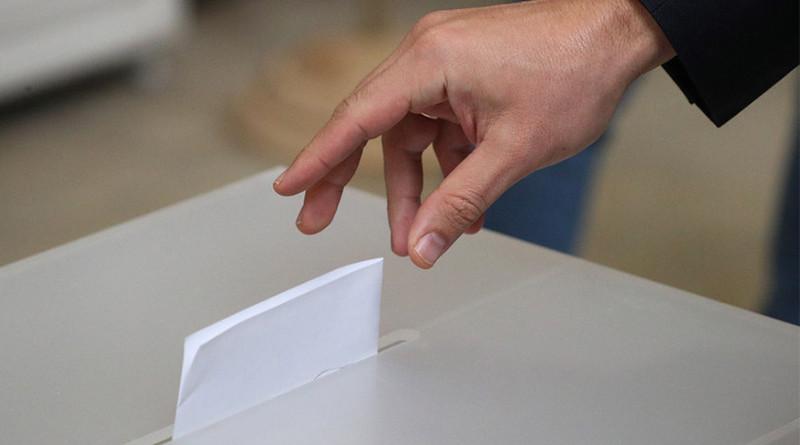 Выборы. Фото БЕЛТА