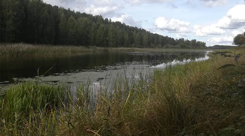Река_погода