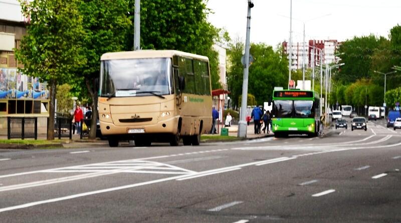 автобусы3