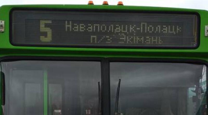 автобус 5 -800x445