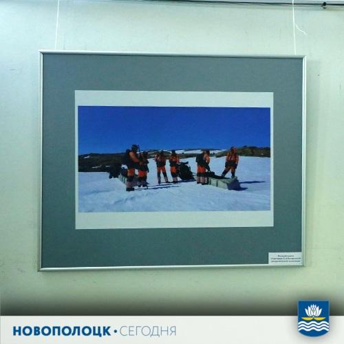 выставка_Антарктида6